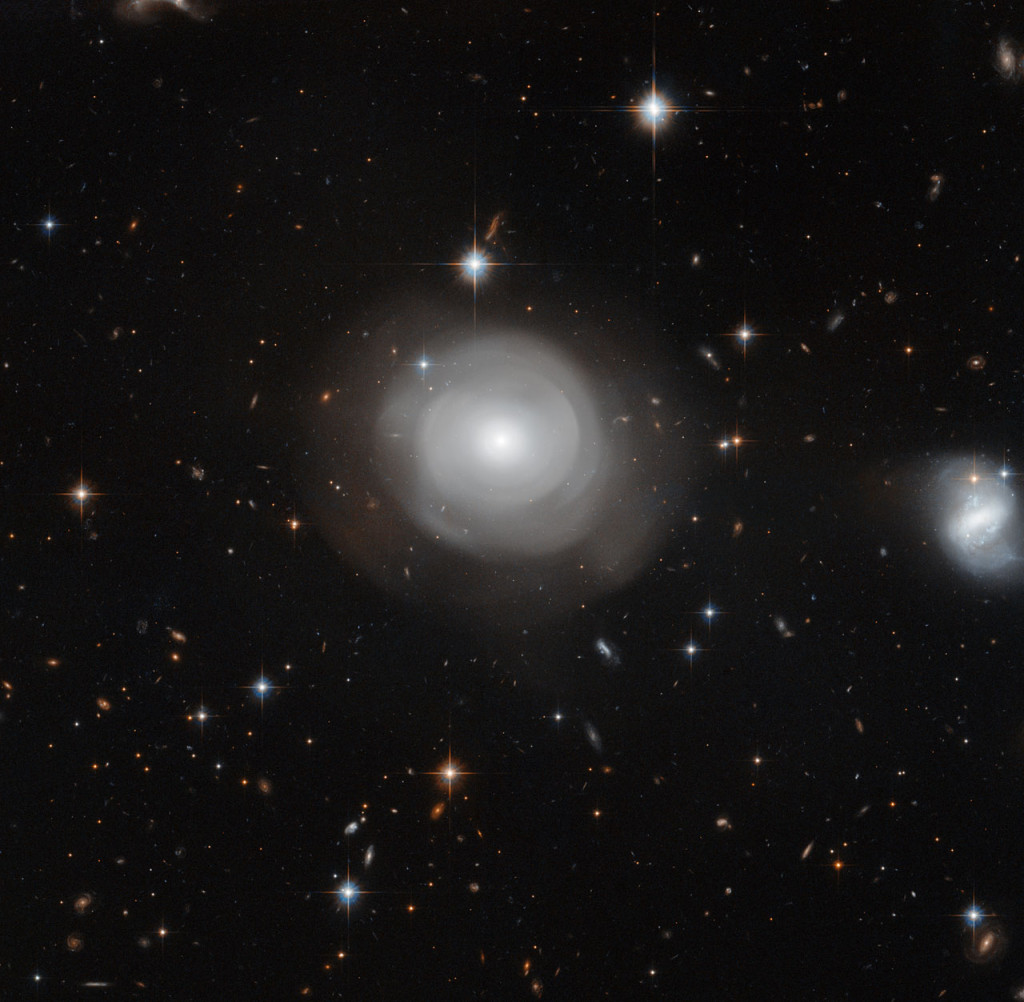 The ghostly shells of galaxy ESO 381-12 are captured here in a new image from the NASA/ESA Hubble Space Telescope, set against a backdrop of distant galaxies. The strikingly uneven structure and the clusters of stars that orbit around the galaxy suggest that ESO 381-12 may have been part of a dramatic collision sometime in its relatively recent past. Image credit: NASA, ESA, P. Goudfrooij (STScI)