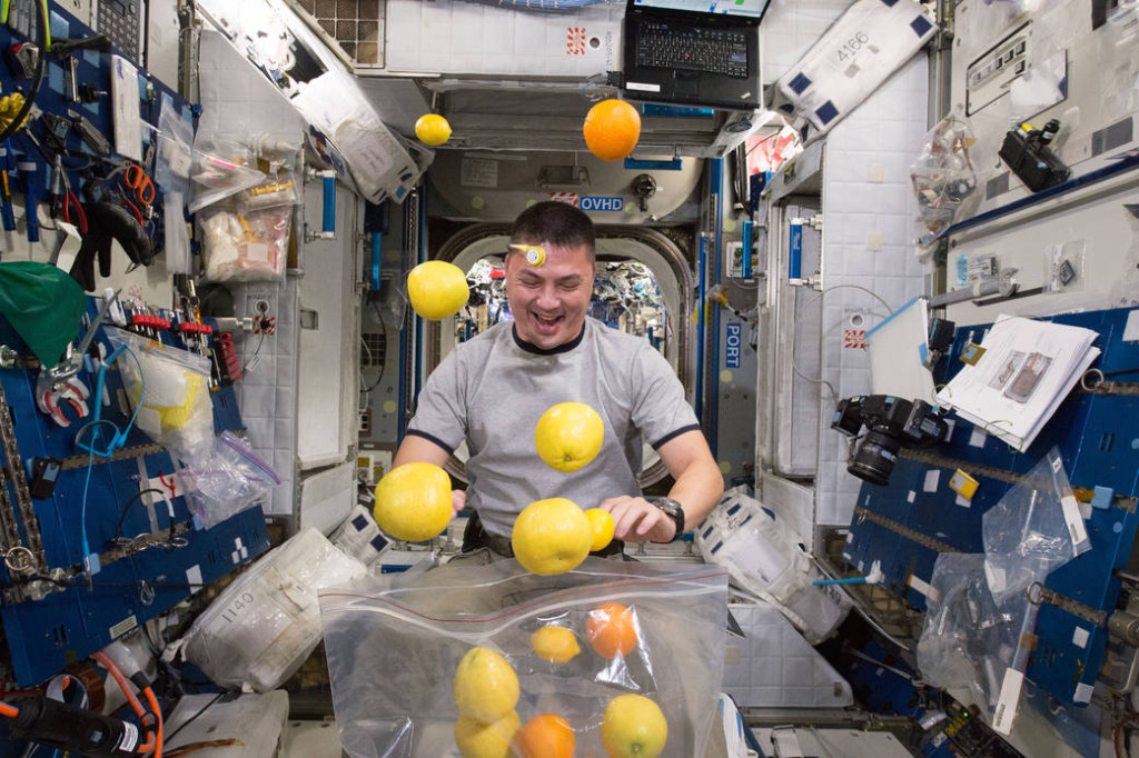 NASA astronaut Kjell Lindgren corrals the supply of fresh fruit that arrived August 25, 2015 on the Kounotori 5 H-II Transfer Vehicle (HTV-5.)  Visiting cargo ships often carry a small cache of fresh food for crew members aboard the International Space Station.  Image Credit: NASA