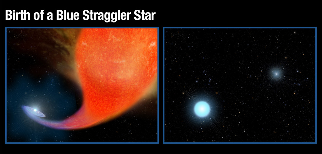 Left: A normal star in a binary system gravitationally pulls in matter from an aging companion star that has swelled to a bloated red giant that has expanded to a few hundred times of its original size. Right: After a couple hundred million years the red giant star has burned out and collapsed to the white dwarf that shines intensely in ultraviolet wavelengths. The companion star has bulked up on the hydrogen siphoned off of the red giant star to become much hotter, brighter and bluer than it was previously. Image Credit: NASA/ESA, A. Feild (STScI)