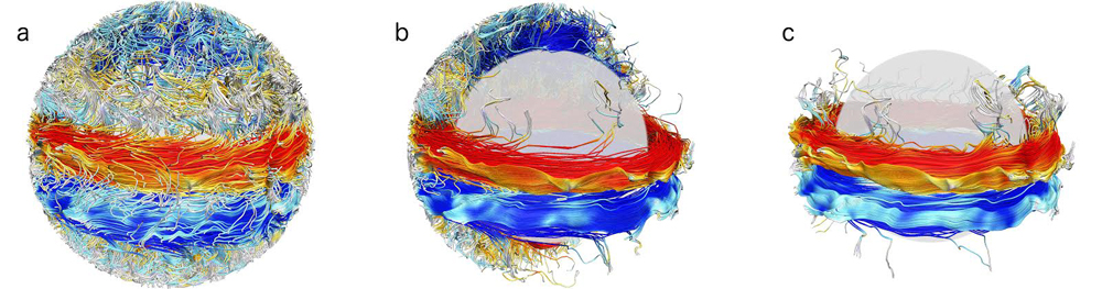 "This series of images, based on a research project run on the Yellowstone supercomputer, shows order and chaos in the Sun's interior dynamo. Turbulent plasma motions (image a) generate a tangled web of magnetic field lines, with opposing ""wreaths"" of magnetism pointing east (red) or west (blue). Images b and c provide a better look at the magnetic wreaths. Image Credit: Kyle Augustson/NCAR"
