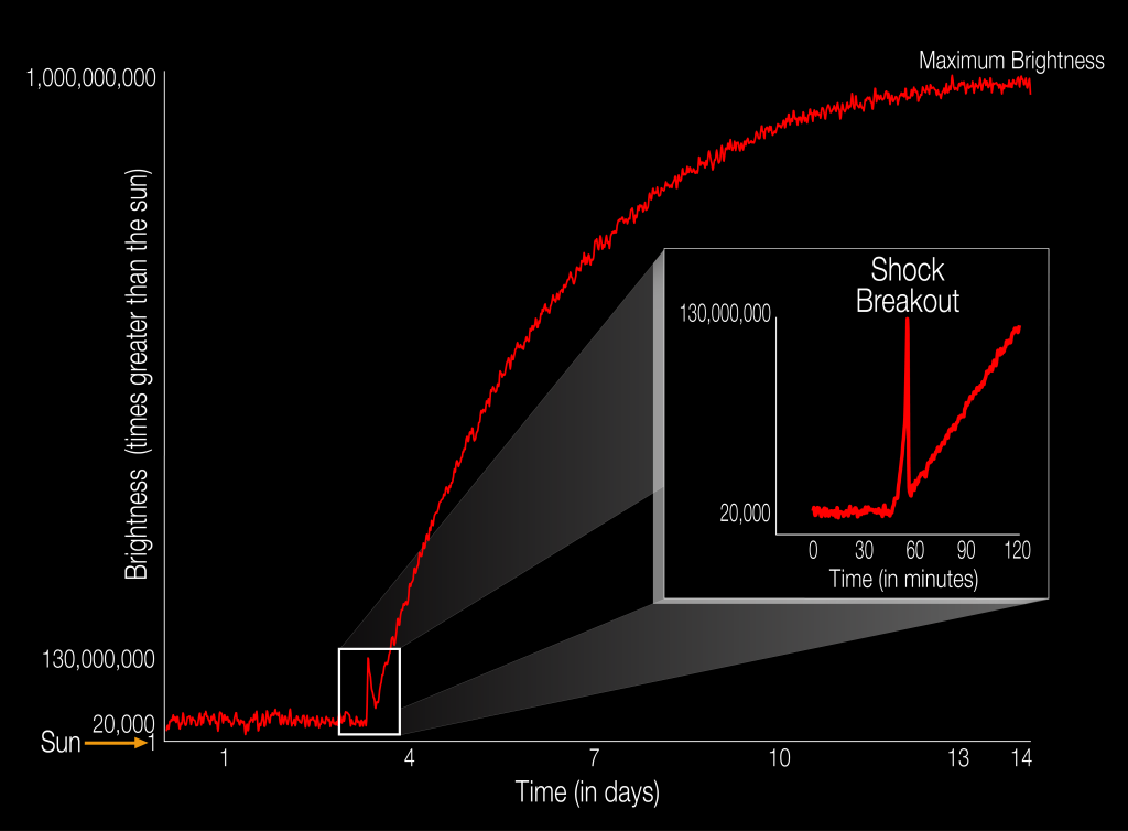 The diagram illustrates the brightness of a supernova event relative to the sun as it unfolds. For the first time, a supernova shockwave has been observed in the optical wavelength or visible light as it reaches the surface of the star. This early flash of light is called a shock breakout. Image Credit: NASA Ames/W. Stenzel