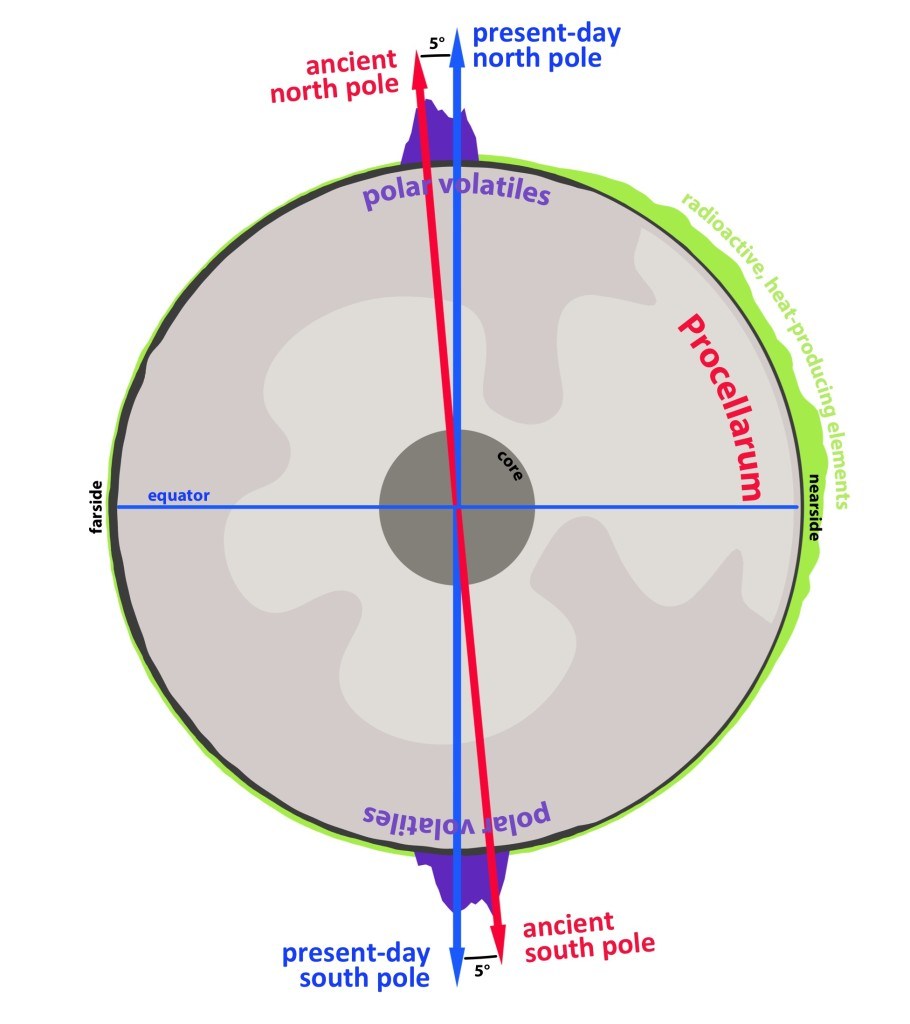 A cross-section through the Moon, highlighting the antipodal nature of lunar polar volatiles (in purple), and how they trace an ancient spin pole. The reorientation from that ancient spin pole (red arrow) to the present-day spin pole (blue arrow) was driven by the formation and evolution of the Procellarum—a region on the nearside of the Moon associated with a high abundance of radiogenic heat producing elements (green), high heat flow, and ancient volcanic activity. Image Credit: James Tuttle Keane, University of Arizona