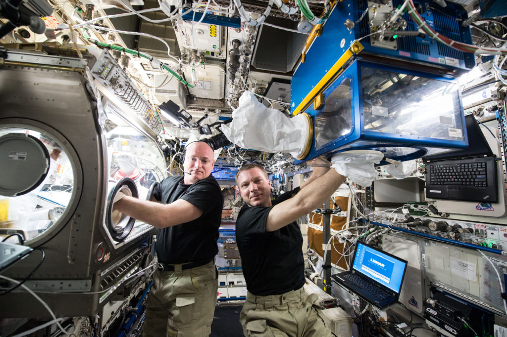 Expedition 43 Commander Terry Virts and Flight Engineer Scott Kelly perform operations for Rodent Research-2, a commercial investigation of the effects of spaceflight on the musculoskeletal and nervous systems that was launched to the station on April 14, 2015. Image Credit: NASA