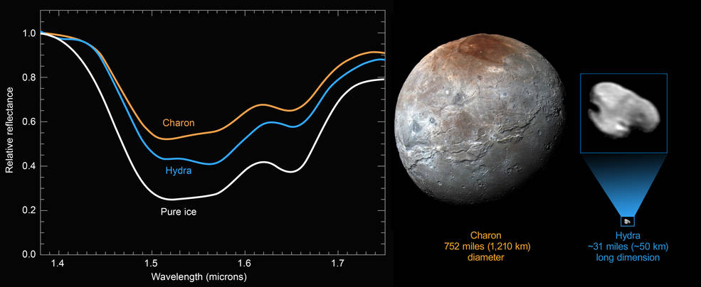 New compositional data from NASA's New Horizons spacecraft reveal a distinct water-ice signature on the surface of Pluto's outermost moon, Hydra. Pluto's largest moon Charon measures 752 miles (1,210 kilometers across), while Hydra is approximately 31 miles (50 kilometers) long. Image Credit: NASA/JHUAPL/SwRI