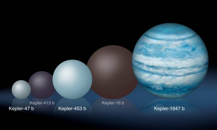 Comparison of the relative sizes of several Kepler circumbinary planets. Kepler-1647 b is substantially larger than any of the previously known circumbinary planets. Image Credit: Lynette Cook