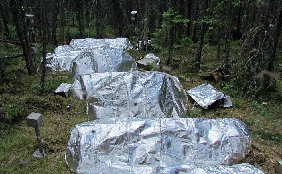 The NASA CHIEFS team and the U.S. Forest Service started testing the first generation of new fire shelter concepts using NASA and other material combinations in a remote area of Canada's Northwest Territories in June 2015 until the firefighters overseeing the controlled burn had to be called away to flight a wildfire. Image Credit: U.S. Forest Service/Ian Grob