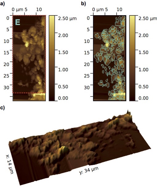 Atomic force microscope topographic images of MIDAS particle E, a loosely packed 'fluffy' aggregate comprising many grains. (a) Overview image with a pixel resolution of 210 nm and a colour scale representing height. b) Sub-units (grains) of the particle detected at the resolution of the instrument are outlined. (c) 3D image of the particle corresponding to the area covered by the red outline in (a) with two times height exaggeration to aid visualization. Image Credit: ESA/Rosetta/IWF for the MIDAS team IWF/ESA/LATMOS/Universiteit Leiden/Universität Wien