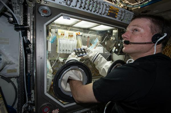 NASA astronaut Terry Virts manipulating a BioServe experiment on ISS.  Image Credit: NASA