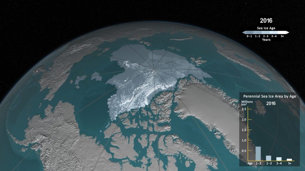 Compare the extension of older sea ice in the Arctic in September 1984 and September 2016. The older ice is thicker and more resistant to melt than new ice, so it protects the sea ice cap during warm summers. In September 1984, there were 1.86 million square kilometers of old ice (5 years or older) left throughout the Arctic sea ice cap during its yearly minimum extent; in September 2016, there were only 110,000 square kilometers of older sea ice left. Image Credit: NASA'S Scientific Visualization Studio