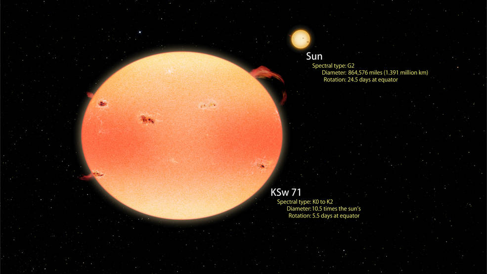 "This artist's concept illustrates how the most extreme ""pumpkin star"" found by Kepler and Swift compares with the sun. Both stars are shown to scale. KSw 71 is larger, cooler and redder than the sun and rotates four times faster. Rapid spin causes the star to flatten into a pumpkin shape, which results in brighter poles and a darker equator. Rapid rotation also drives increased levels of stellar activity such as starspots, flares and prominences, producing X-ray emission over 4,000 times more intense than the peak emission from the sun. KSw 71 is thought to have recently formed following the merger of two sun-like stars in a close binary system. Image Credit: NASA's Goddard Space Flight Center/Francis Reddy"