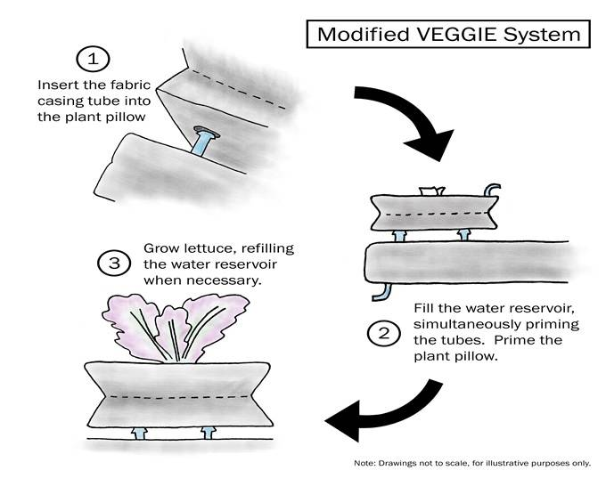 Notional design of modified plant pillow for the Veggie payload aboard the space station. Image Credit: The Ohio State University